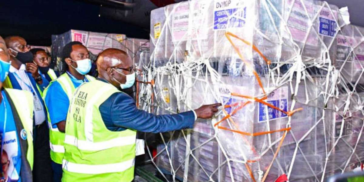 Presidential ballot papers arrive today